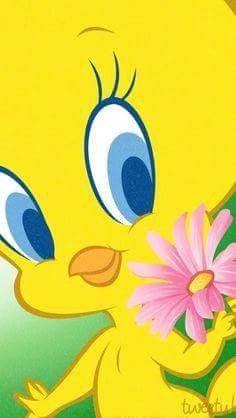 281 Best A Tweety Bird Heaven images.