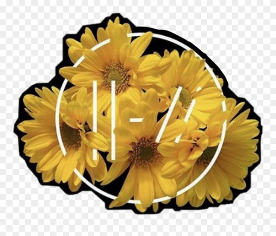 trench #twentyonepilots #tøp #flowers #aesthetic #music.