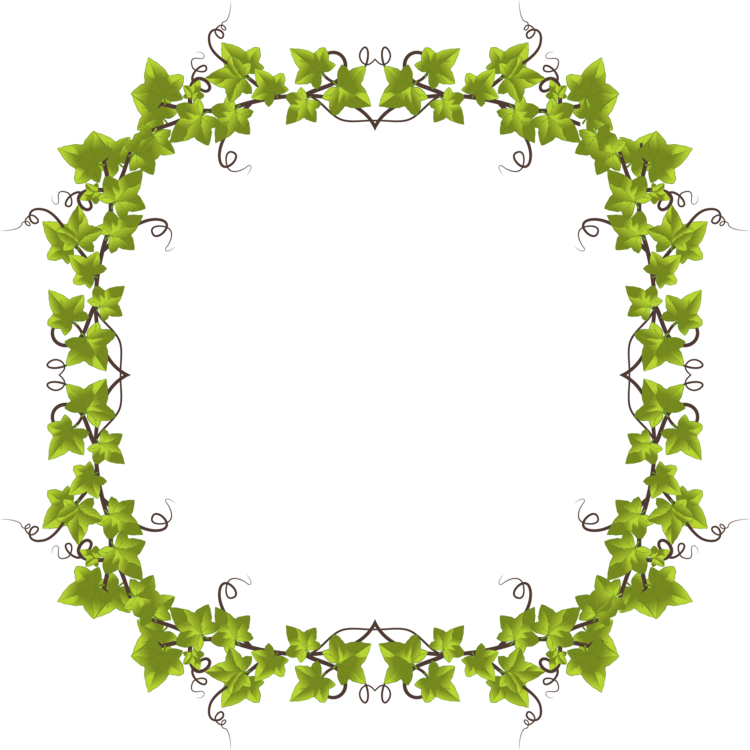 Picture Frame,Twig,Border PNG Clipart.