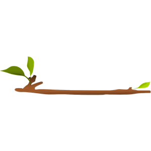 Tree Twig Clipart.