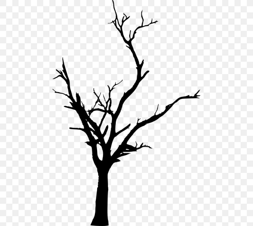 Twig Tree Branch Clip Art, PNG, 480x732px, Twig, Black And.