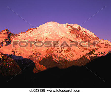 Stock Photograph of Snowcapped Mount Rainier with Twilight Glow.