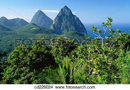 Stock Photo of Petit Piton and Grand Piton. St. Lucia. West Indies.