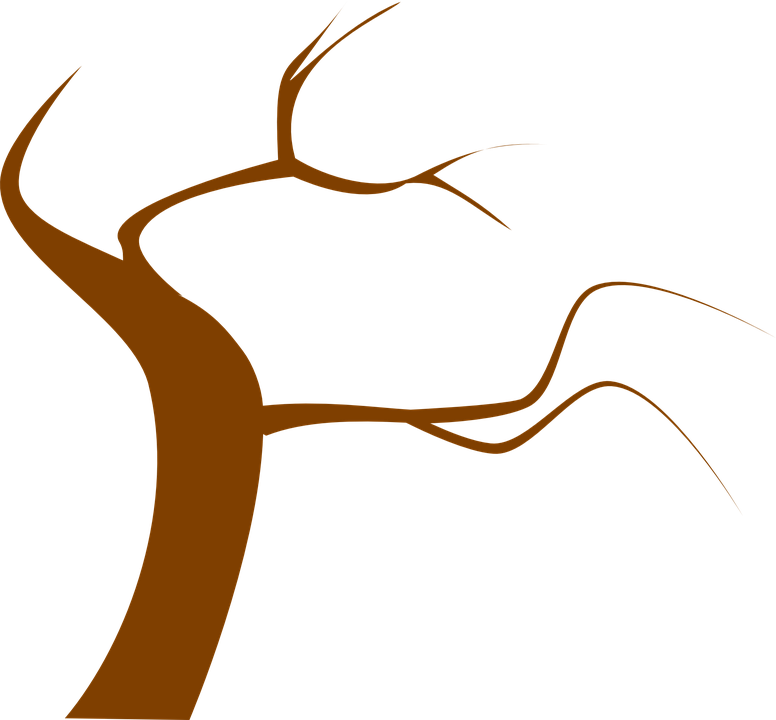 Free vector graphic: Tree, Brown, Branch, Twig, Twisty.