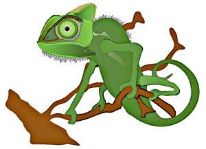 Free chameleon.