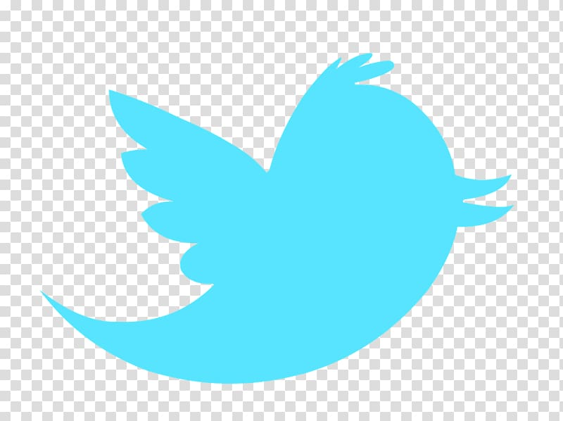 Bird Logo Computer Icons , twitter transparent background.