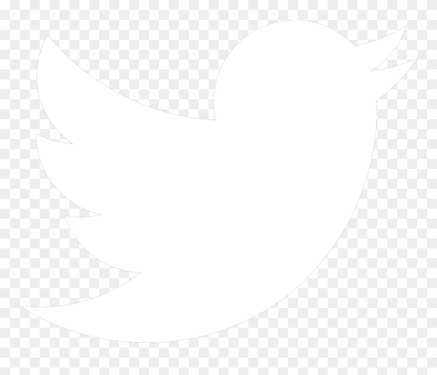 White Twitter Bird Transparent Background Clipart (#911613.