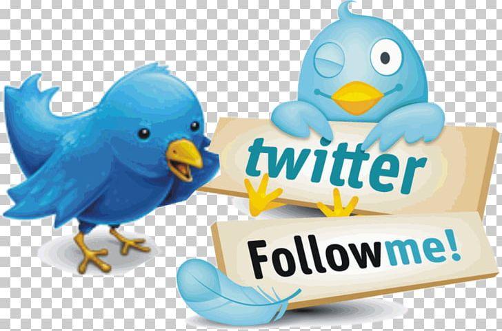Twitter Graphics Photograph Like Button PNG, Clipart, Beak.