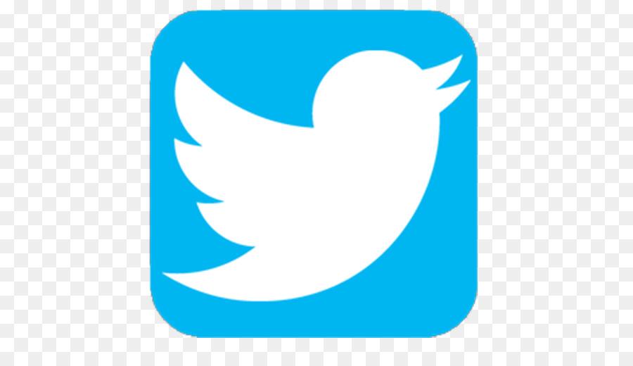 Bird Logo Euclidean vector Icon.