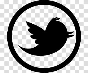 Twitter , black Twitter logo transparent background PNG.