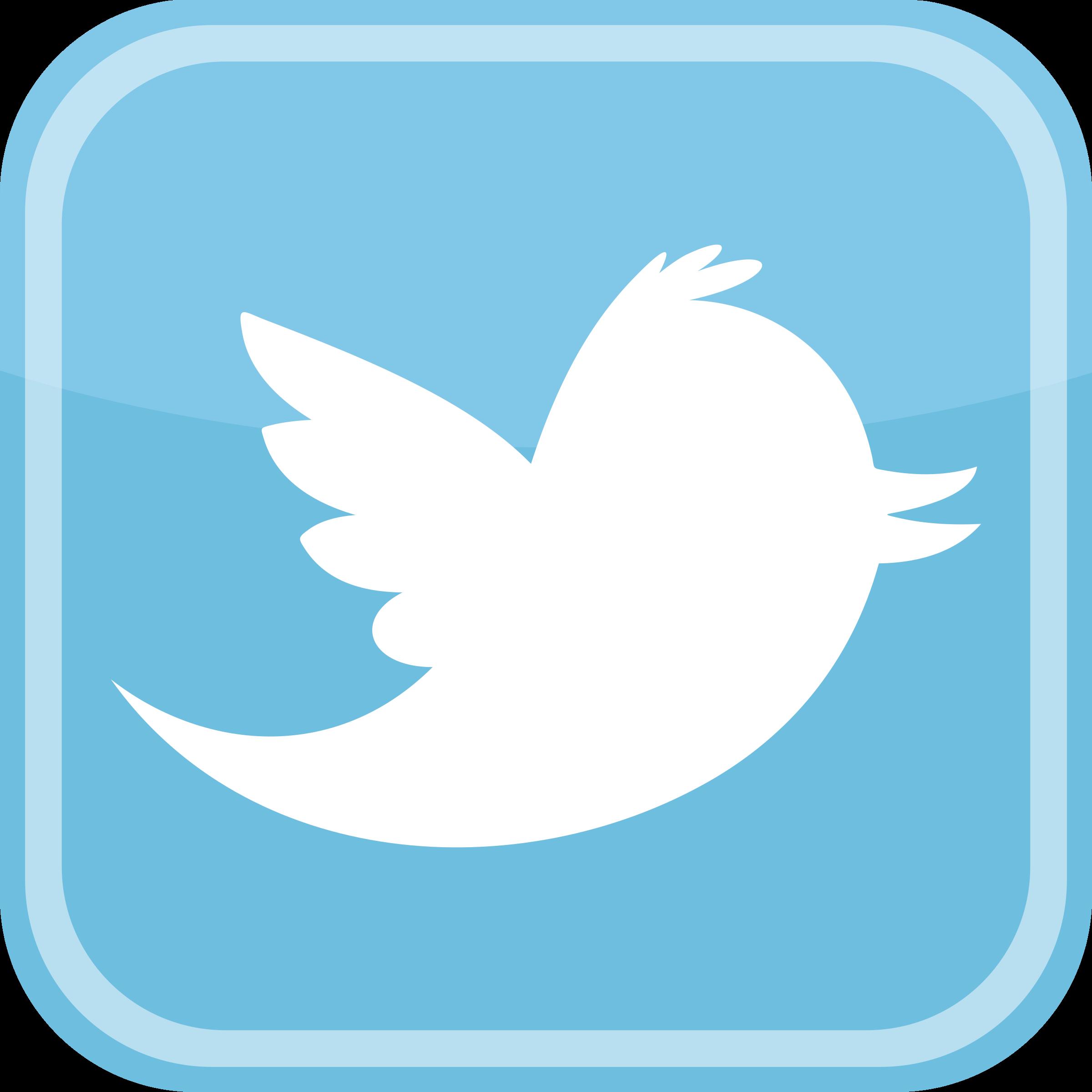 Twitter Logo PNG Transparent & SVG Vector.