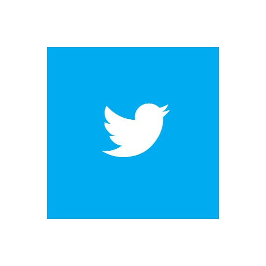 Twitter Tweet Icon #91413.