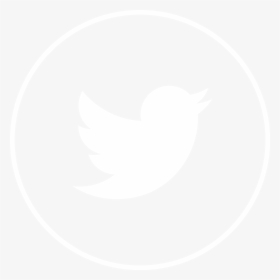 Twitter White Icon Png , Png Download, Transparent Png.