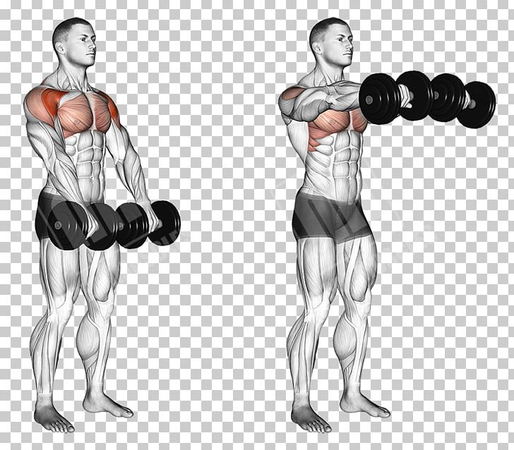 Front Raise Dumbbell Overhead Press Fly Exercise PNG.