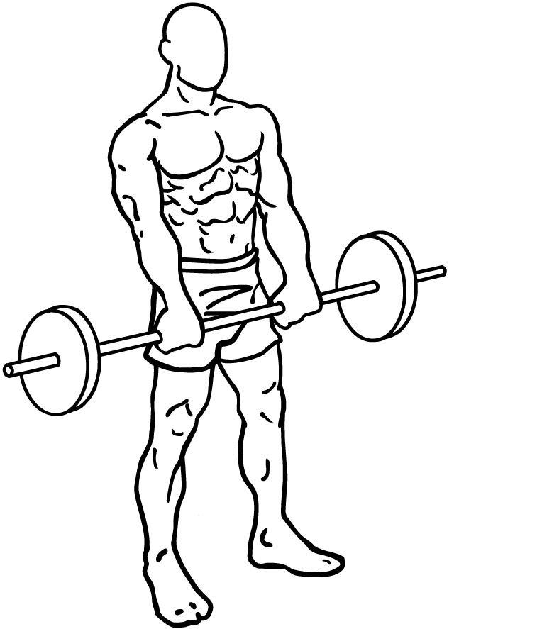 Barbell Front Raise.