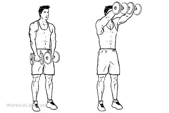 Dual / Two Arm Dumbbell Front Shoulder Raises.