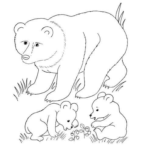 Bear Mother And Bear Cubs coloring page.