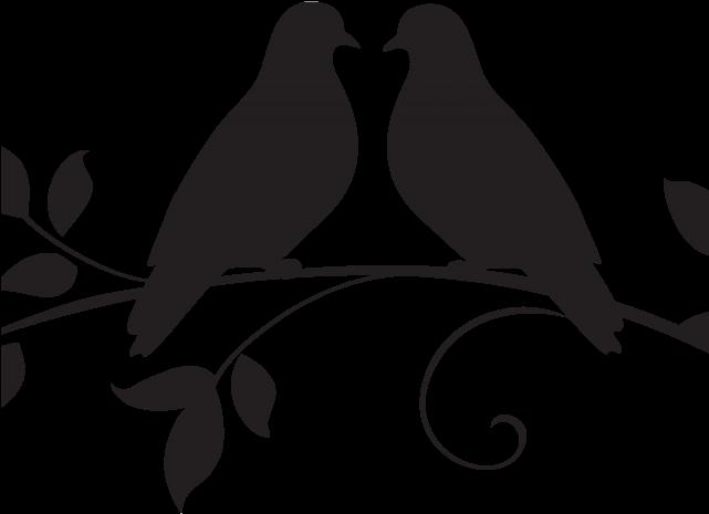 White Dove Clipart Marriage.