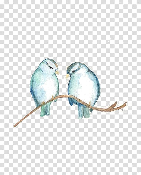 Two gray birds perching on branch illustration, Bird.