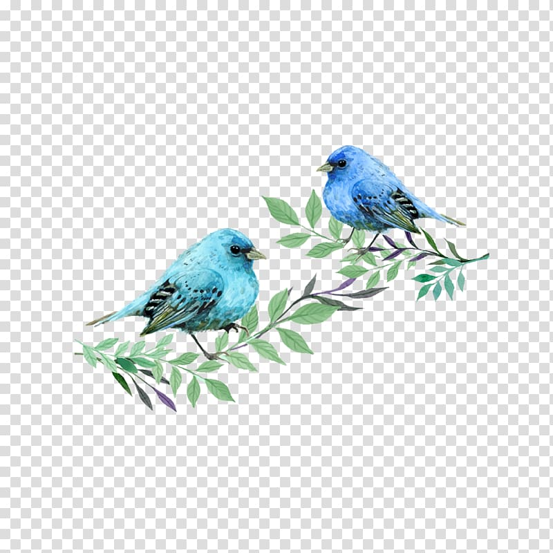 Two blue bunting birds perching on leaves illustration.