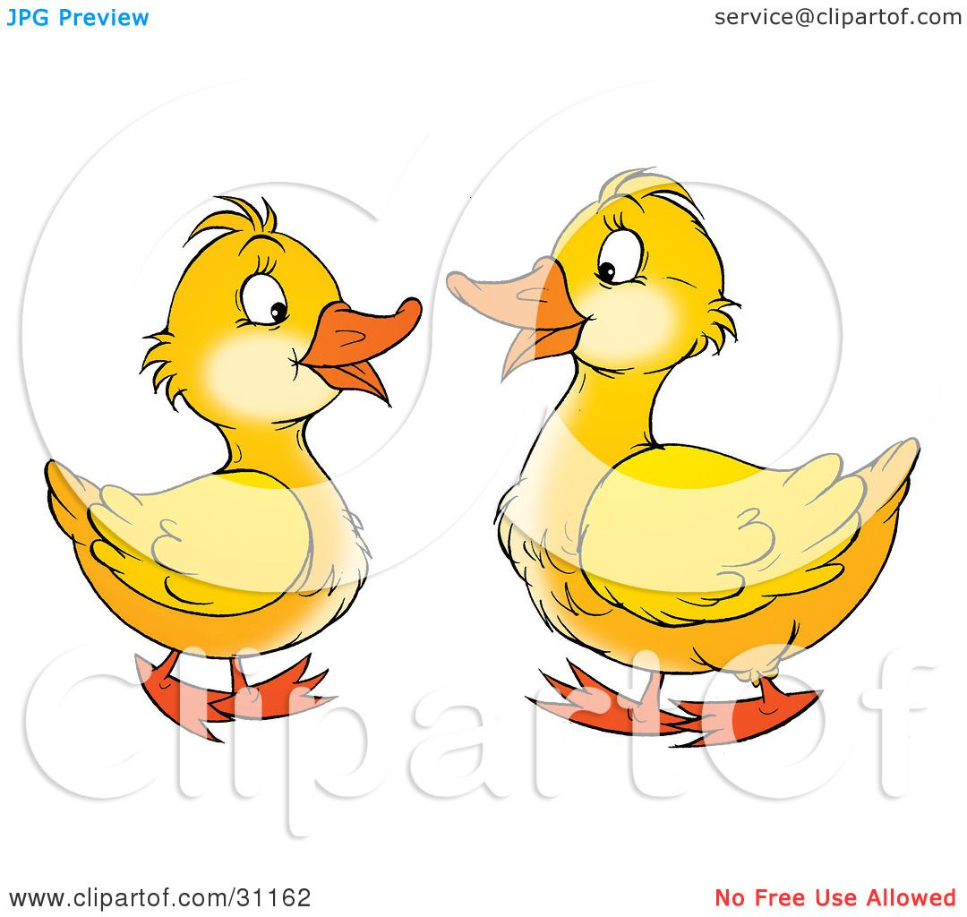 Clipart Illustration of Two Yellow Geese Talking And Facing Each.