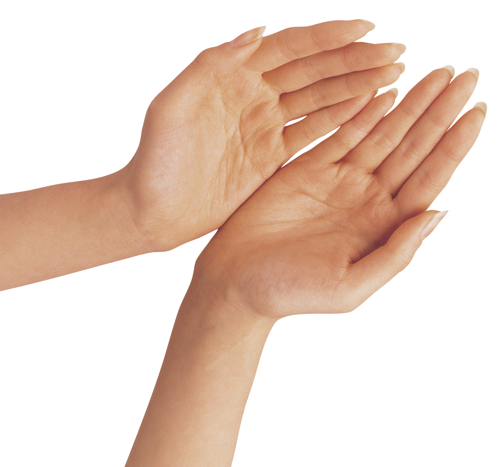 Two Hands PNG Clipart Image.
