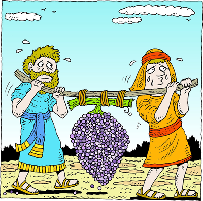 Image: Spies Carrying Grapes.