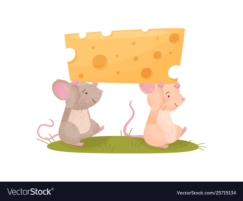 Two mice carry a piece cheese.
