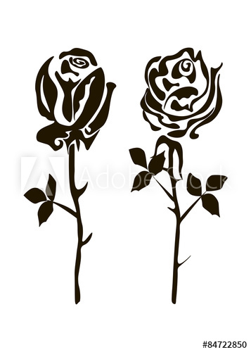 two black and white roses on a white background.