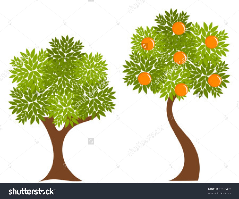 Two Trees Green Leaves Orange Tree Stock Vector 75568402.
