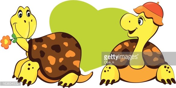Two Turtles premium clipart.
