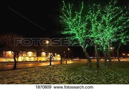Stock Photograph of south shields, tyne and wear, england; green.