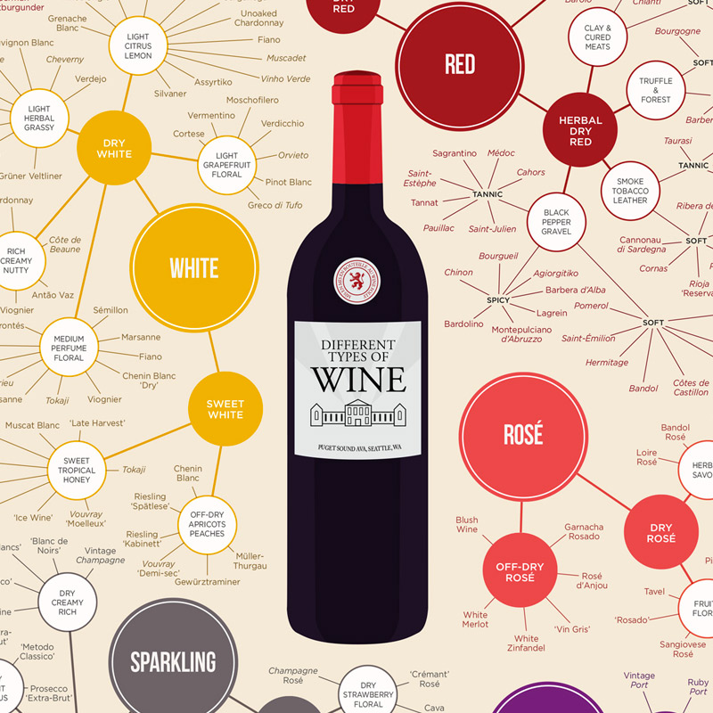 Common Types of Wine (top varieties to know).