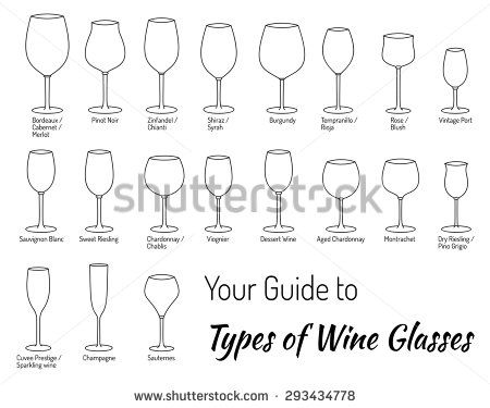 Mega collection of hand drawn wine glasses. Experts guide to types.