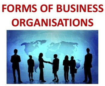 Marketing/Business: Types of Business Organizations Slides Presentation  Activity.
