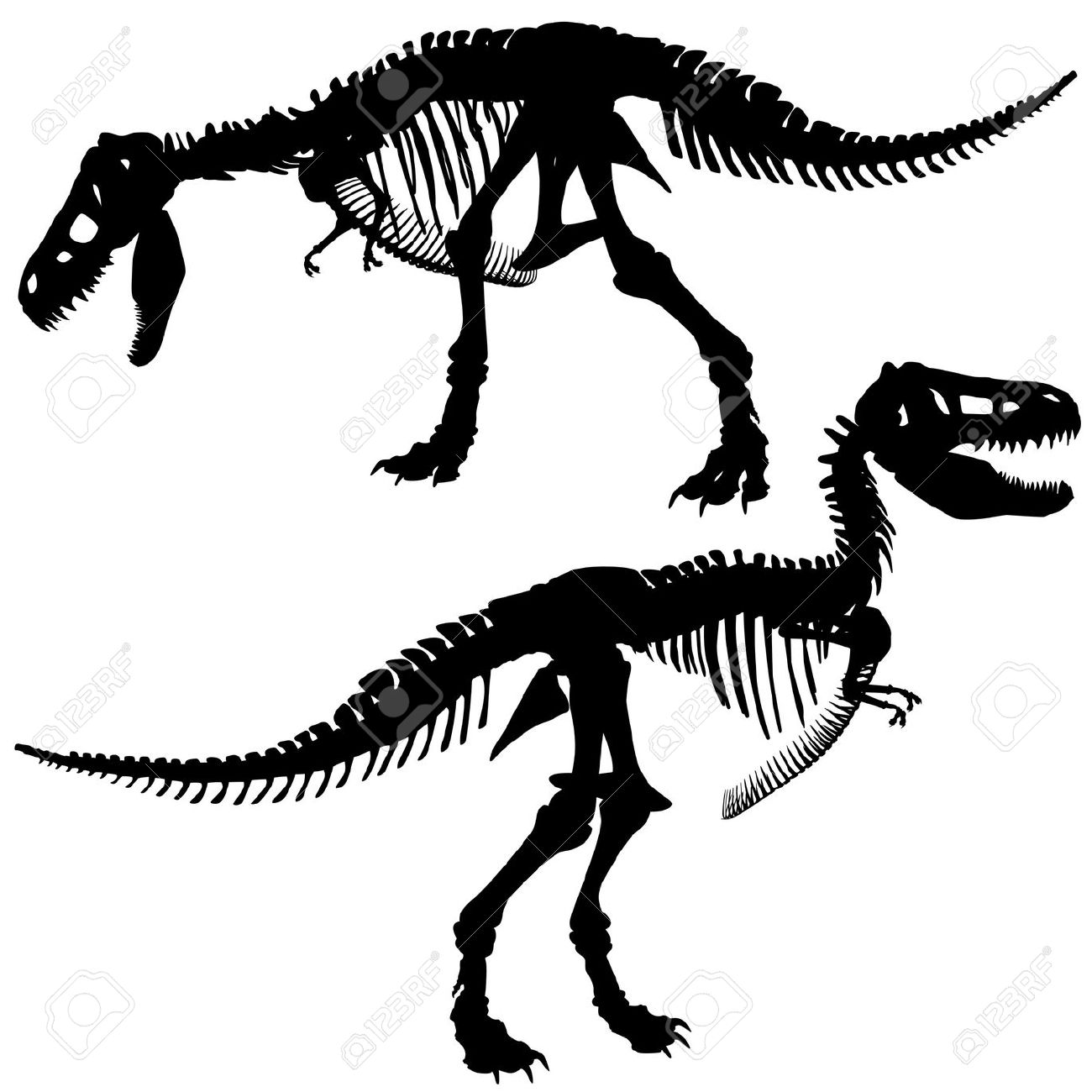 Editable Silhouettes Of The Skeleton Of A Tyrannosaurus Rex.