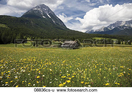 Stock Images of Austria, Tyrol, Leutaschtal, Landscape and.