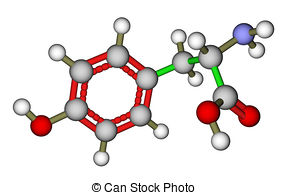 Stock Image of tyrosine.
