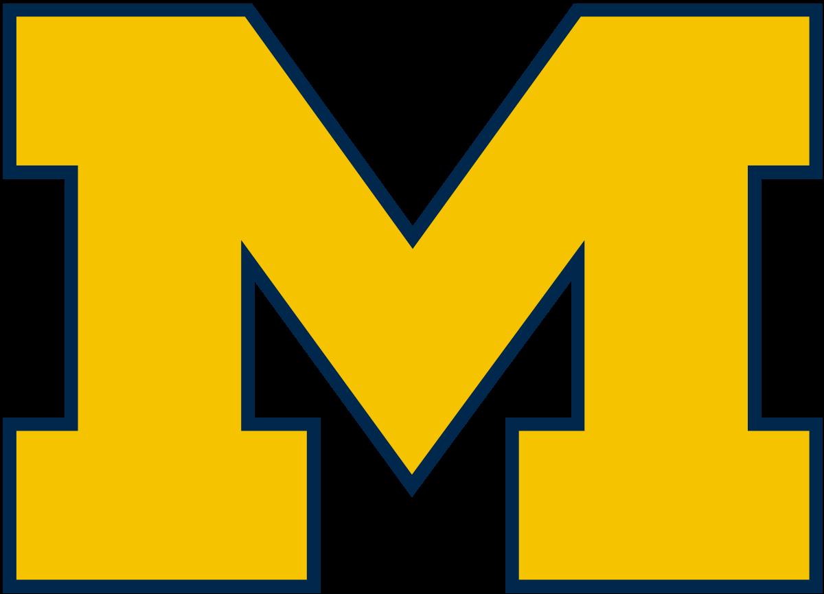 2019 Michigan Wolverines football team.