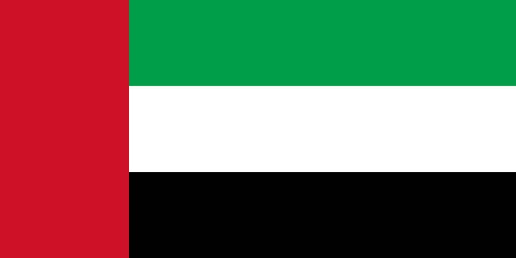 The United Arab Emirates flag vector.
