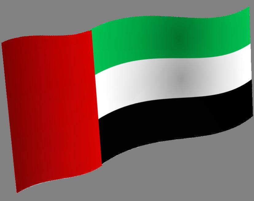 ملف:Flag.