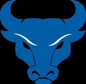 UB Bulls Logo Vector (.PDF) Free Download.
