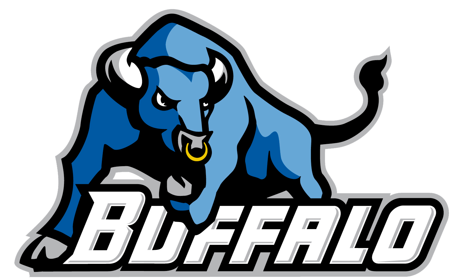 Win Tickets to a UB Bulls Football Game for your Youth.