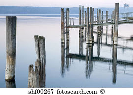 Wooden poles Stock Photo Images. 13,057 wooden poles royalty free.