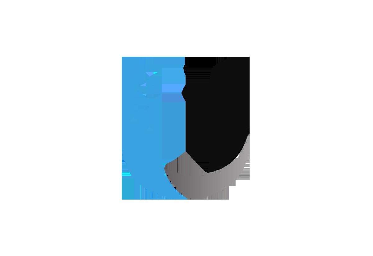 Ubiquiti Networks logo.
