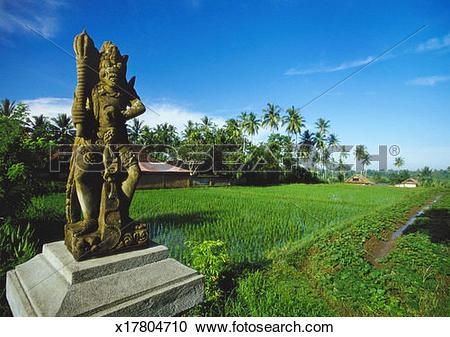 Stock Photography of Staue of Raksha in a Rice Field, Ubud.