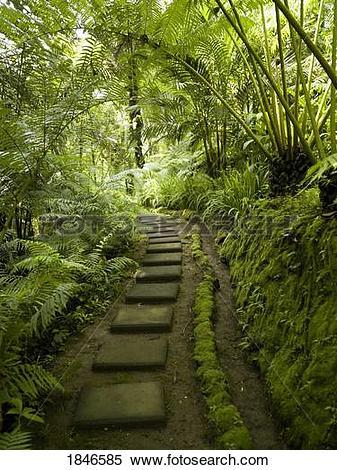 Stock Image of Forest path; Ubud, Bali, Indonesia 1846585.