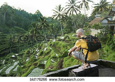 Stock Images of Caucasian tourist admiring rural rice terrace.