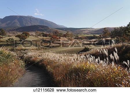 Pictures of Senomoto Highland, Ubuyama, Kumamoto, Japan u12115628.