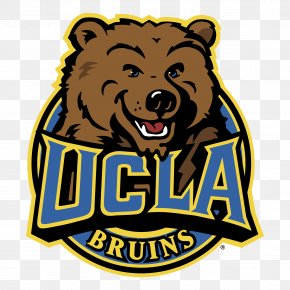 University Of California, Los Angeles UCLA Bruins Football.